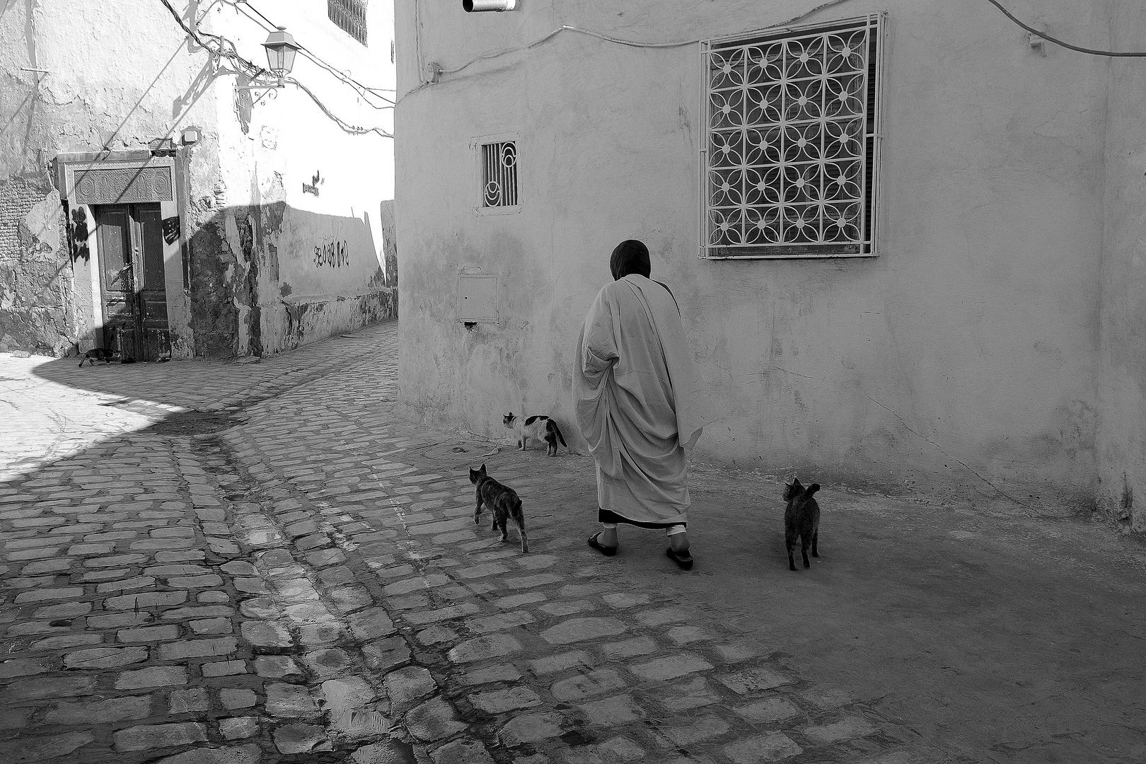 La femme aux chats (Chacun cherche son chat n°4)