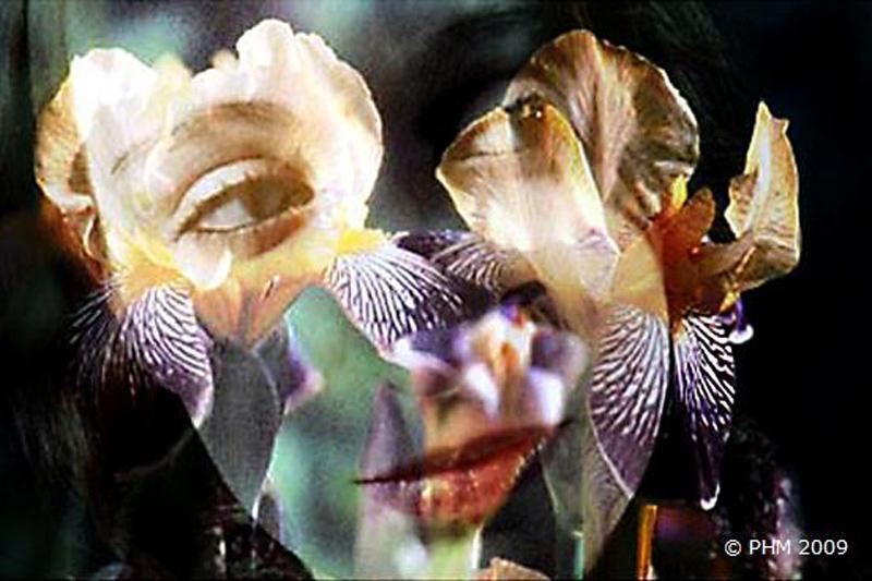 La fille aux iris
