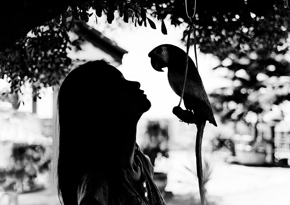 La fille et le perroquet