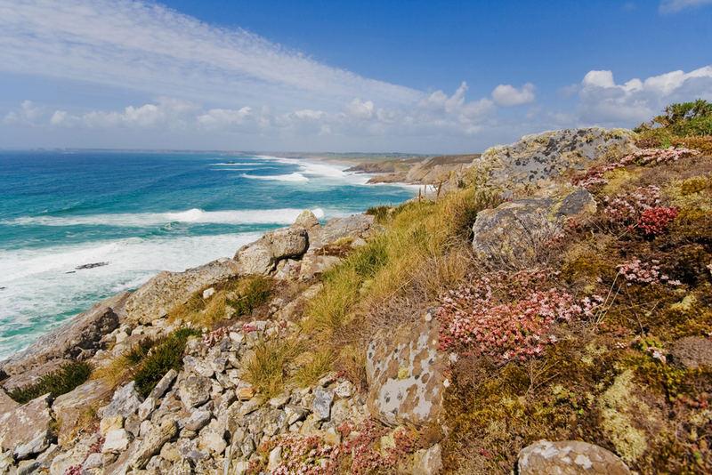 La flore bretonne