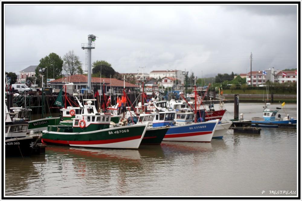 la flottille des pêcheurs de ST JEAN de LUZ