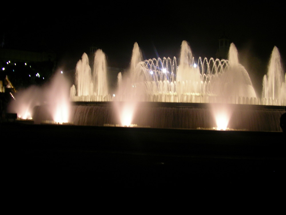 la fontana reale
