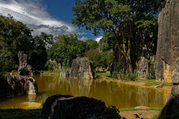 La forêt de pierre, Yunnan, Chine.