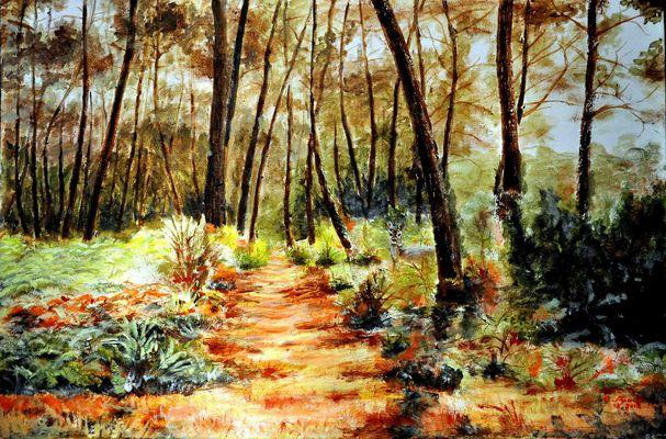 La Forêt Landaise près de Capbreton