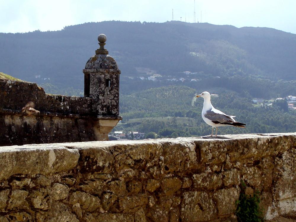 La forteresse de Valença / La fortaleza de Valença..02