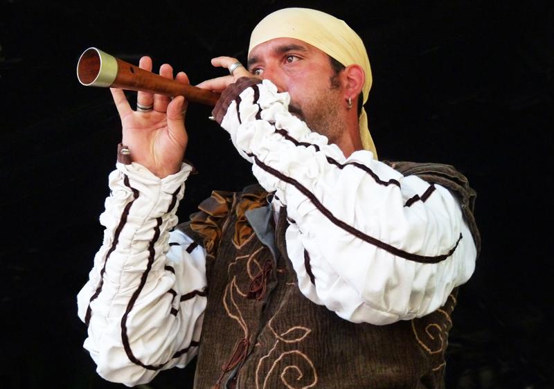 La fête médiévale. 2