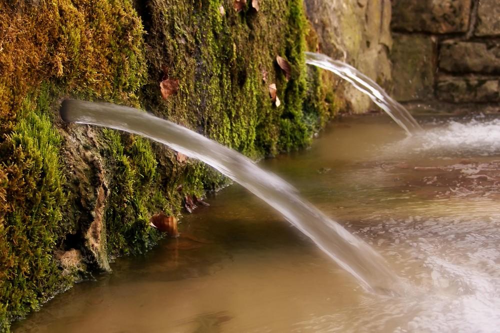 La fuente de los mosquitos (Sierra de Urbasa)
