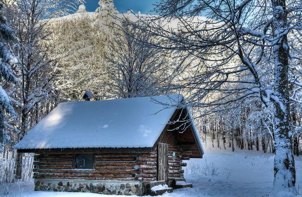 La fuste sous la neige