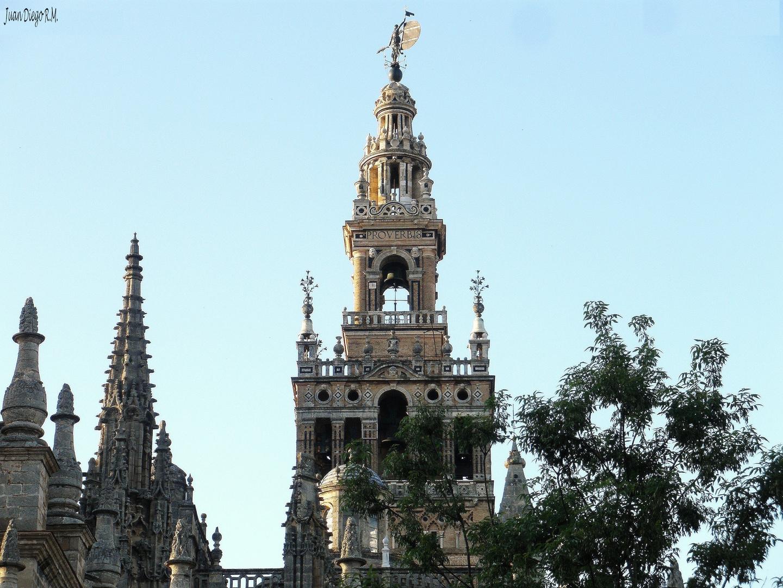 * * * LA GIRALDA * * * Campanario de la Catedral de Santa María.