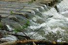 La grande forza dell'acqua.