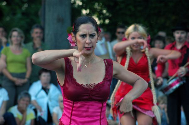 La Guardia Flamenca