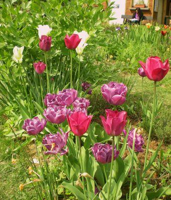 La liseuse aux tulipes