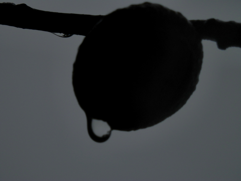 la lluvia 3