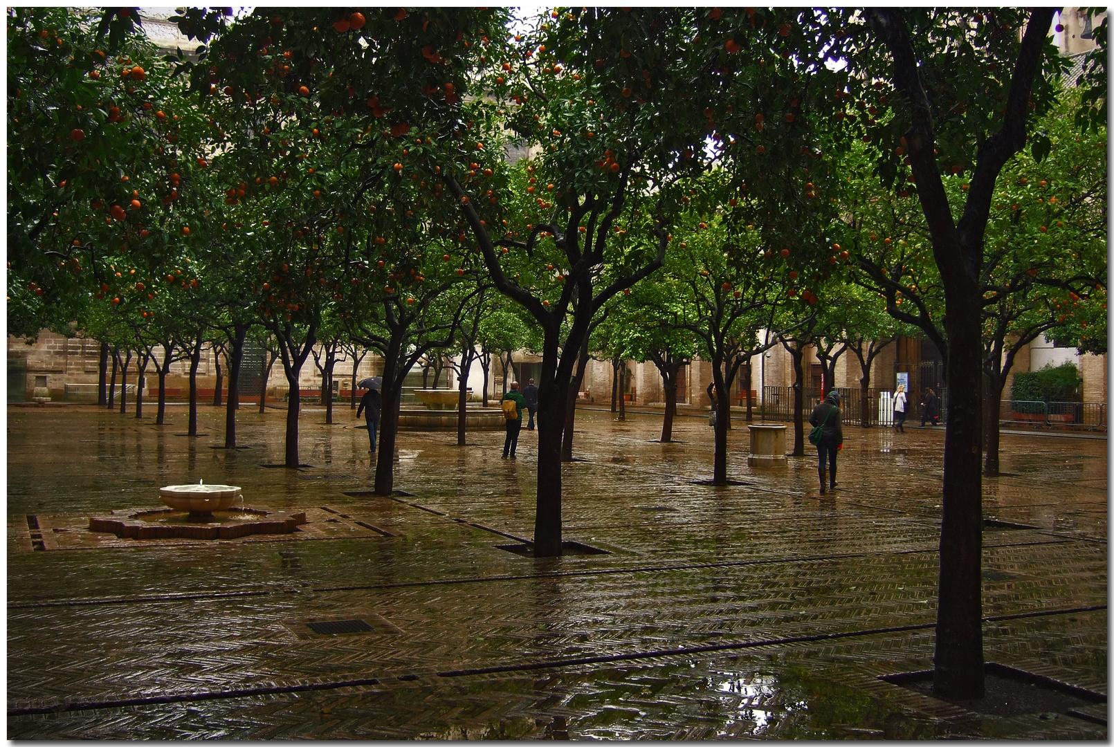 La lluvia, en Sevilla, es una maravilla (para Chaíto)