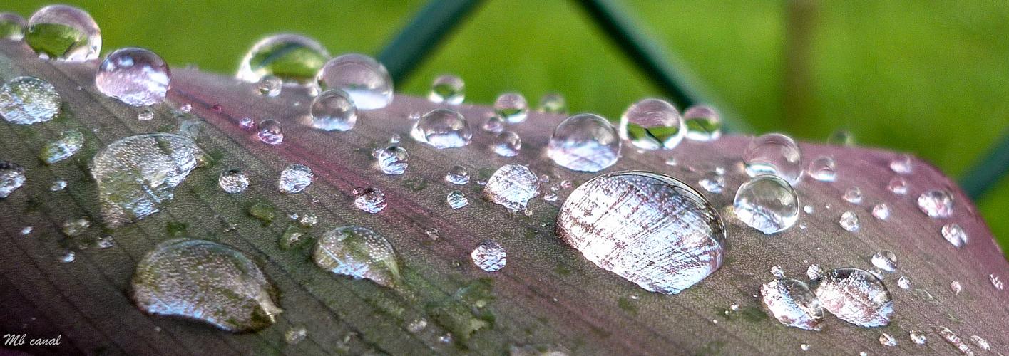 ¿La lluvia es arte?