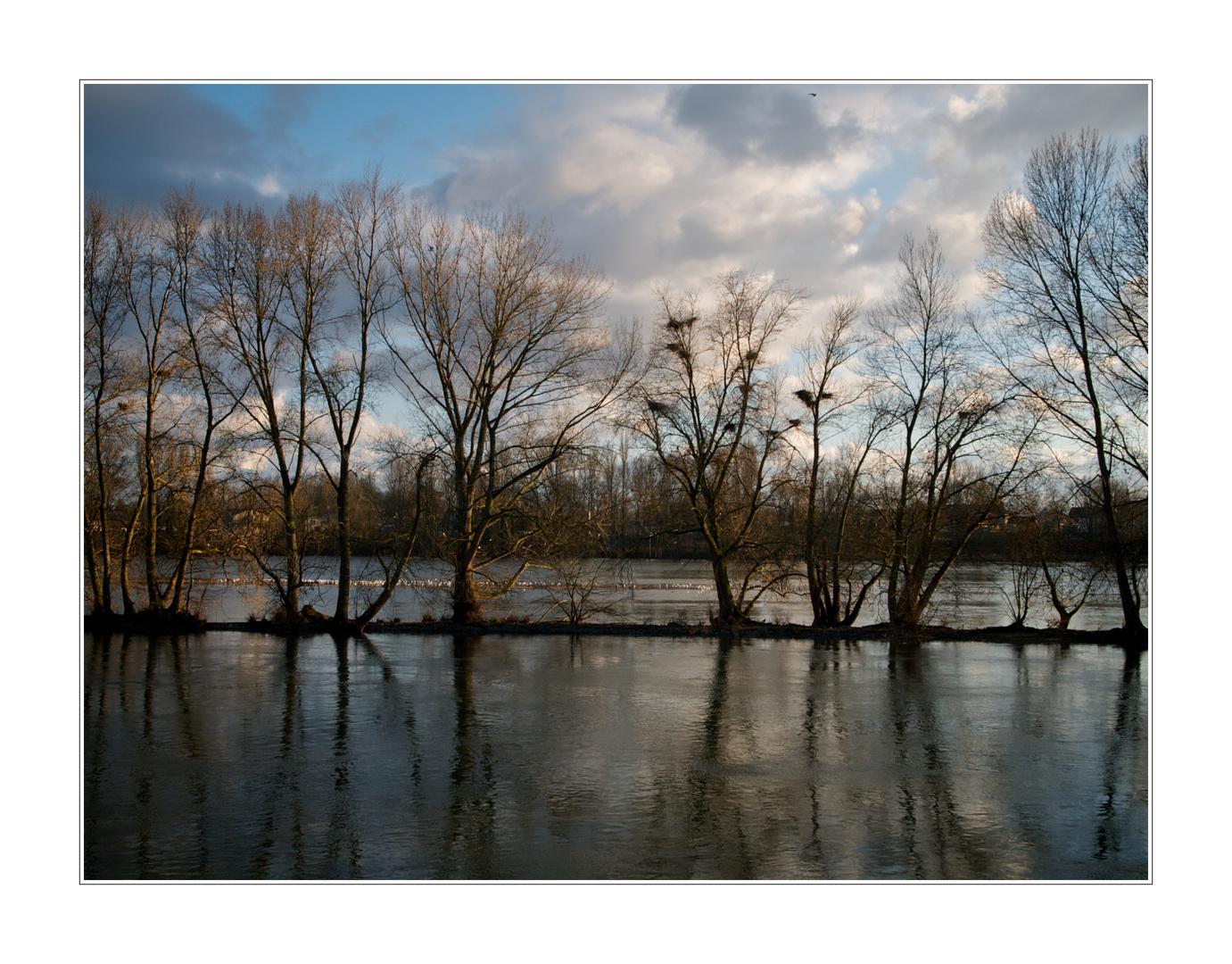 La Loire 7