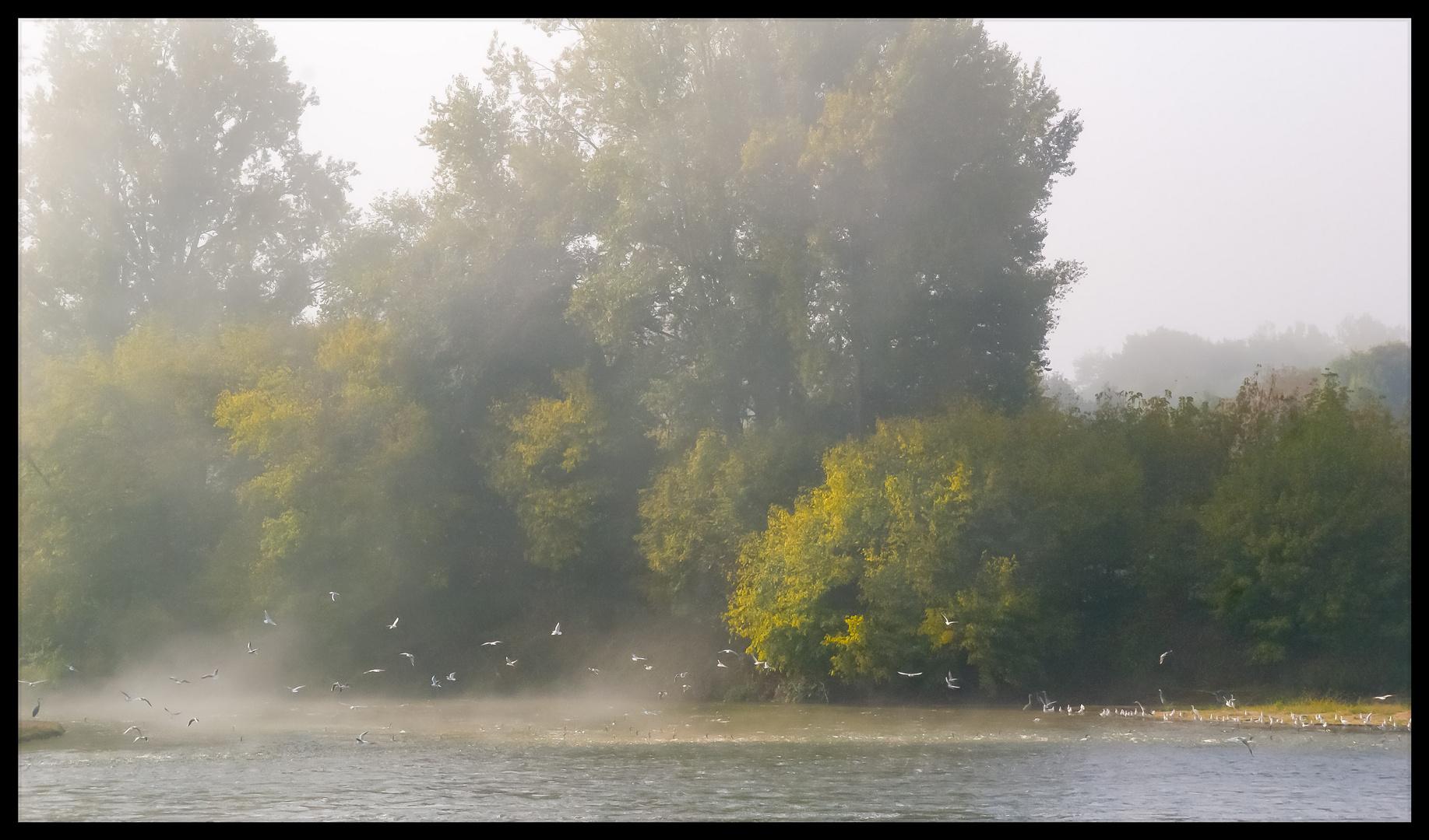 La Loire féerique