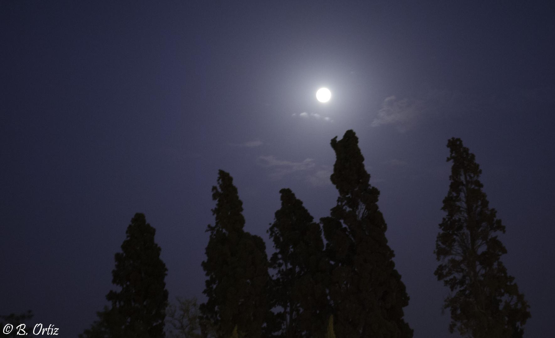 La Luna nos acuna