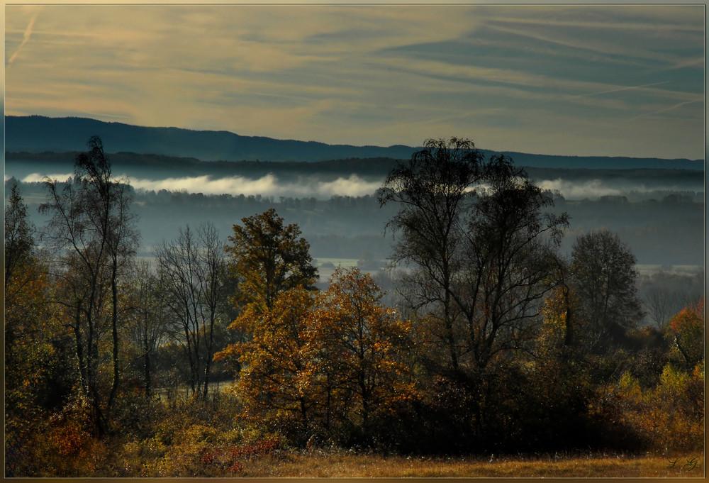 La magie de la brume matinale