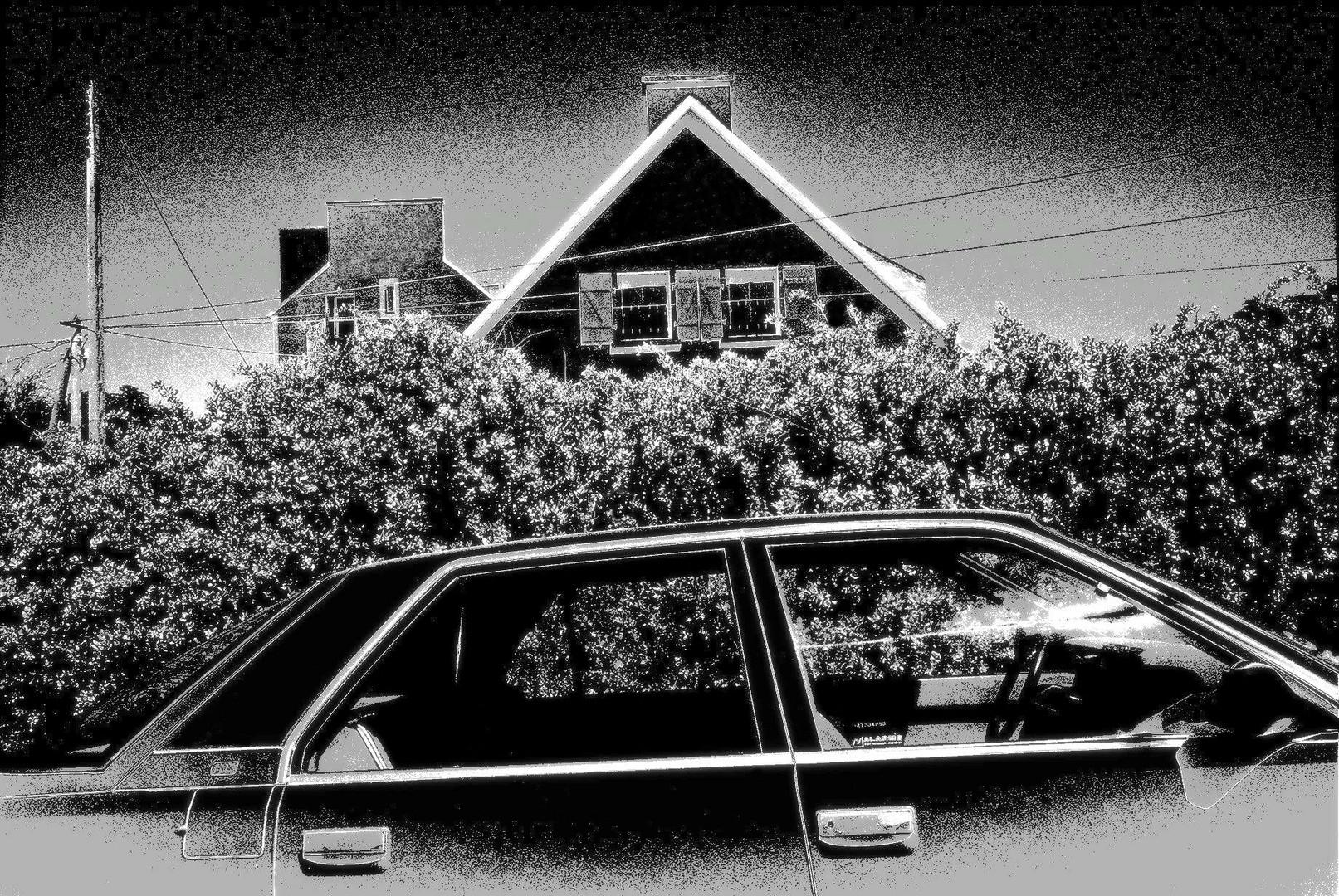 La maison, la voiture.