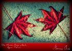 La Mano Roja... En Suave Agua Azul...