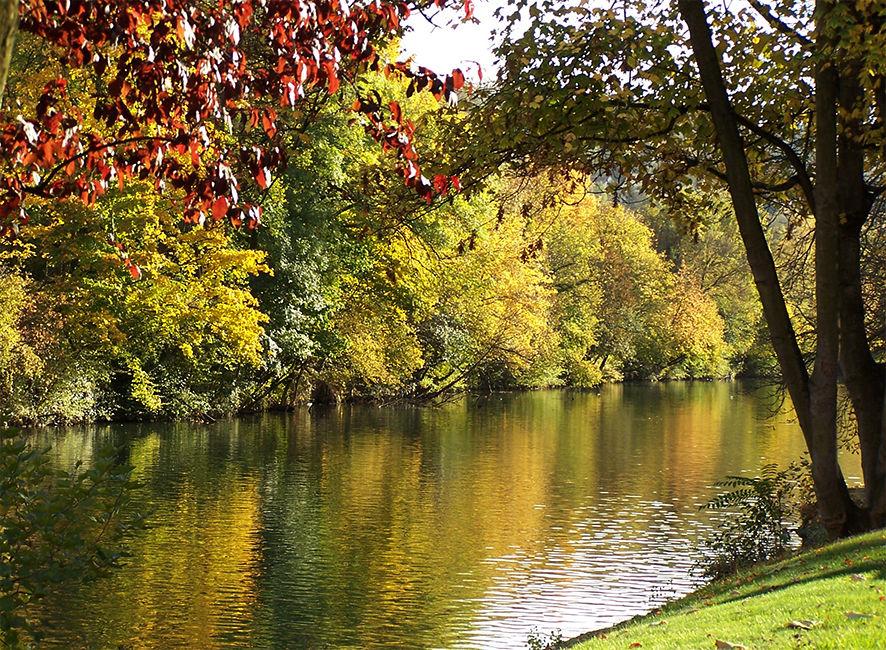 La Marne en automne