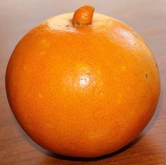La mia prima arancia...