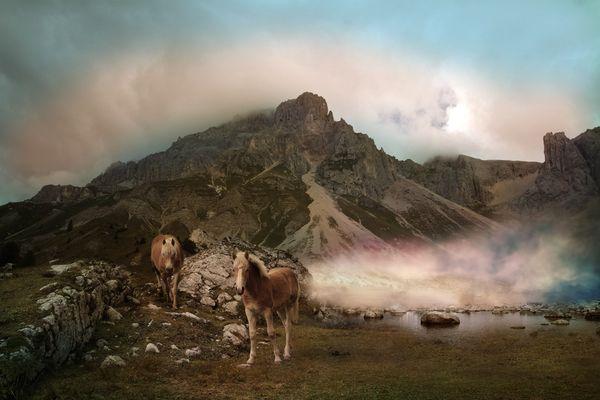 La montagna dei cavalli