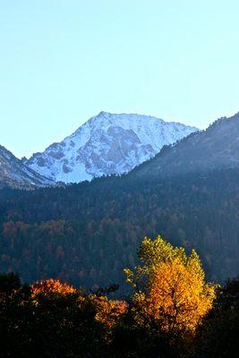 la montagne enneigée en automne