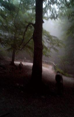 La nebbia sulla maiella