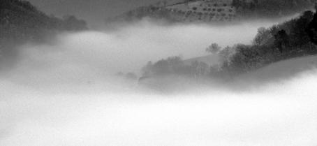 La nebbia...2008