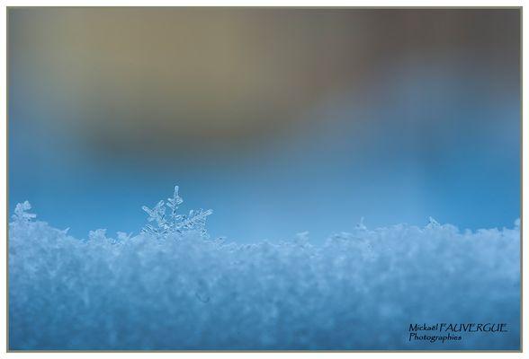 La neige en macro