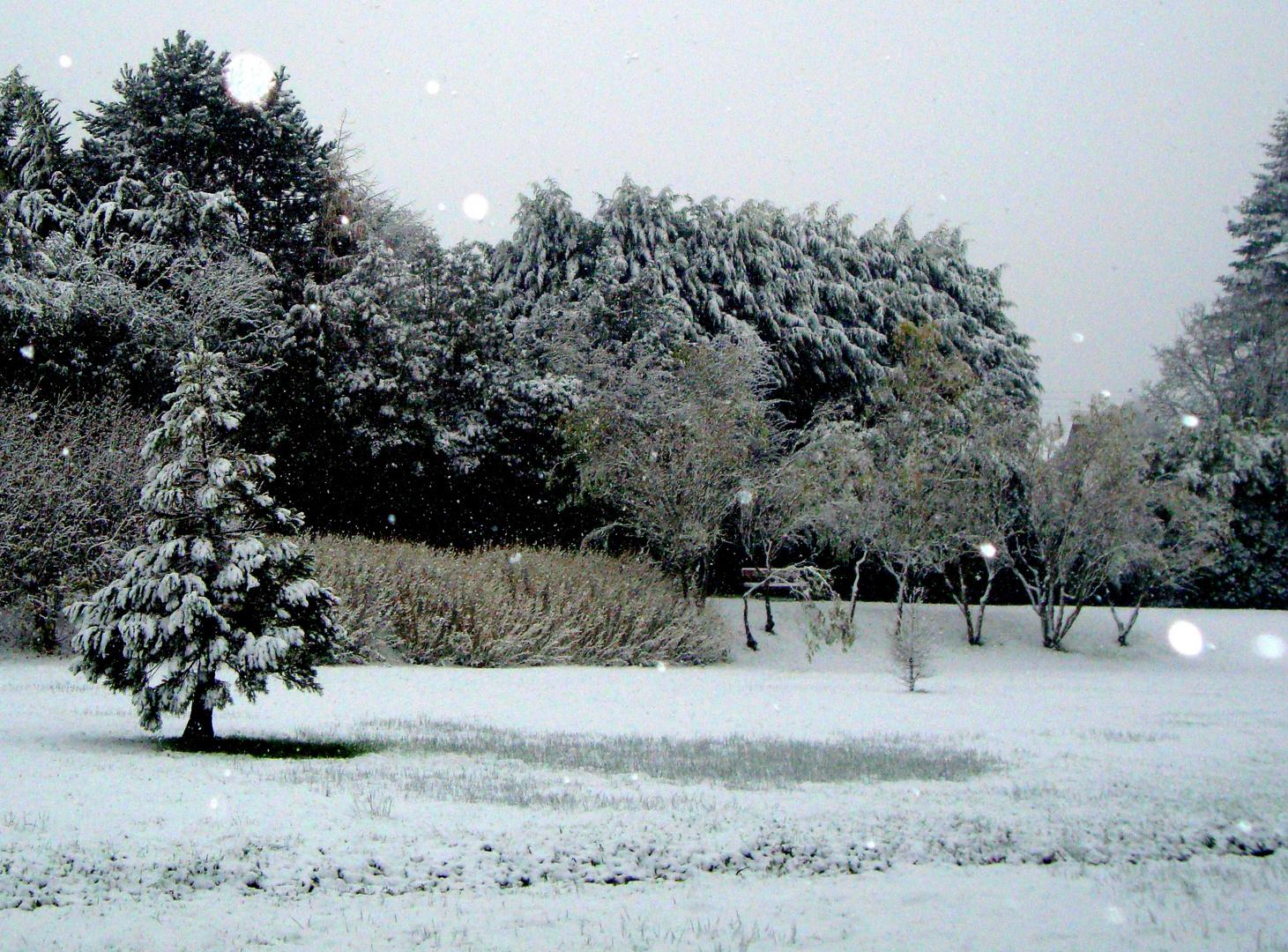 La neige.