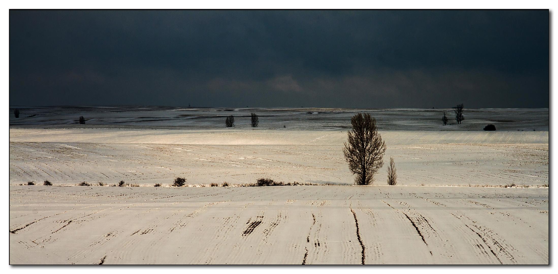 La nieve cubre Tierra de Campos