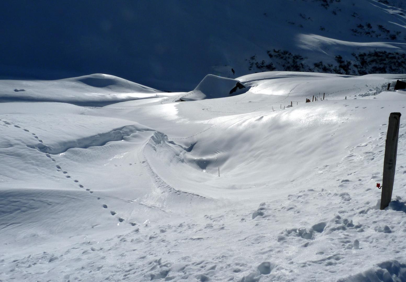 La nieve y el sol / Neige et soleil / Schnee und Sonne,..04