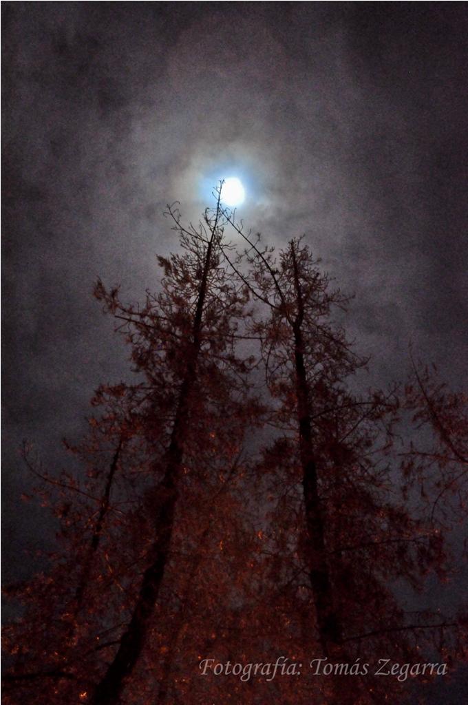 la noche oscura.