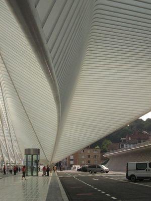 La nouvelle Gare des Guillemins (photo 3)