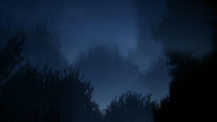 La nuit (12)