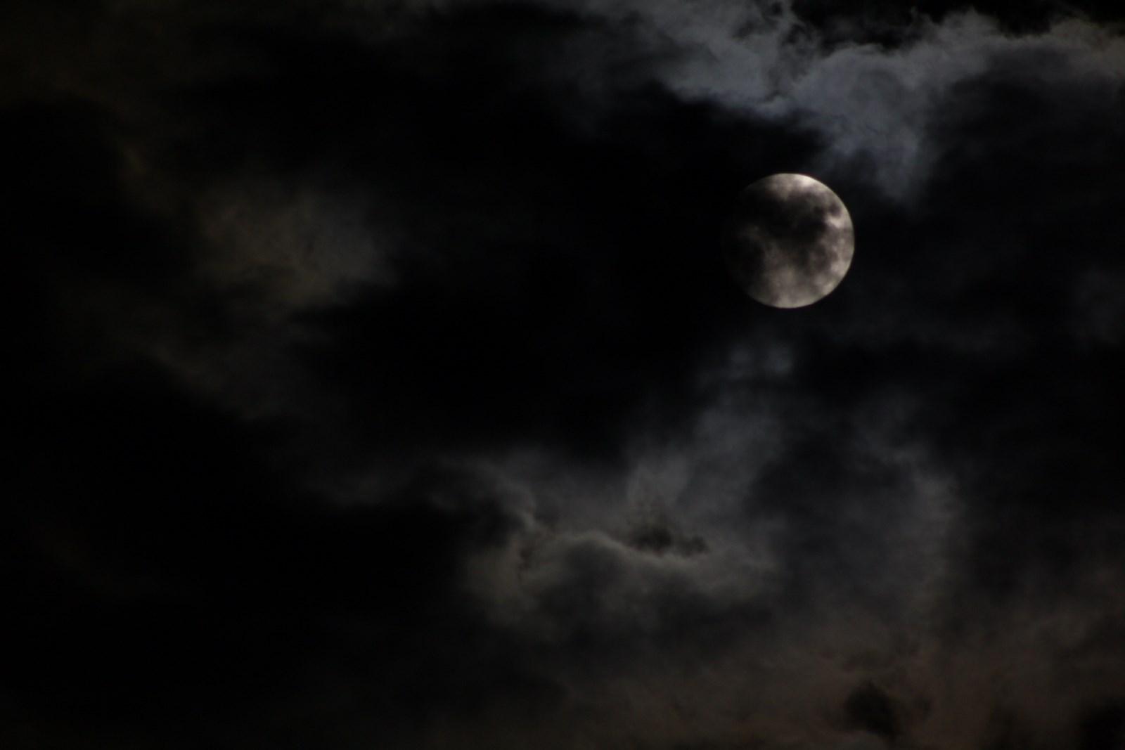 La nuit des loups-garous