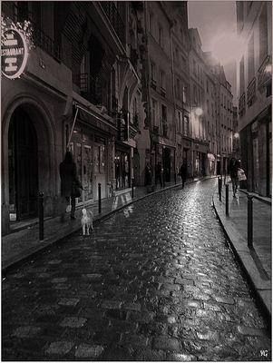 La nuit tombe sur la rue Galande...