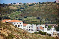 La nuova invasione della natura ..... immobiliare in riva al mare!