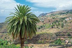 ::. La Palma .::