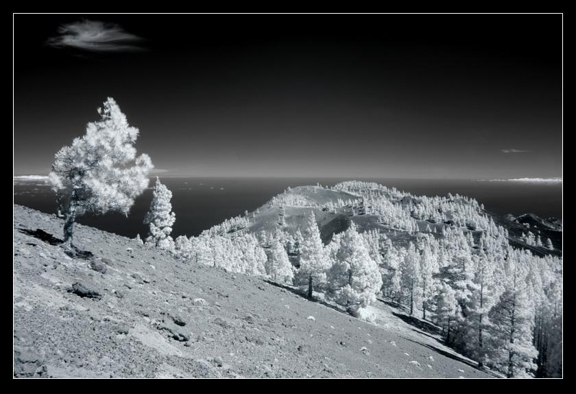 La Palma in Infrarot - Der Auftakt einer wohl etwas größeren Serie