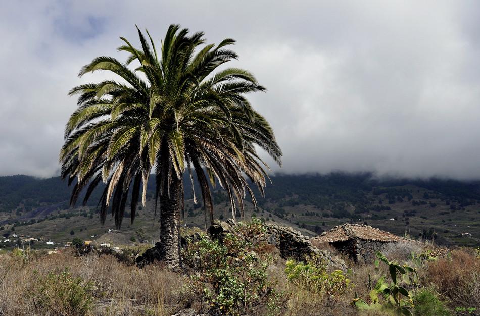 La Palma ist die Nordwestlichste der sieben großen Kanarischen Inseln im Atlantischen Ozean.
