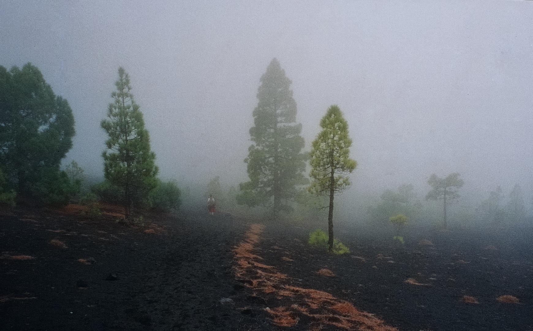 La Palma, La Routa de los vulcanos