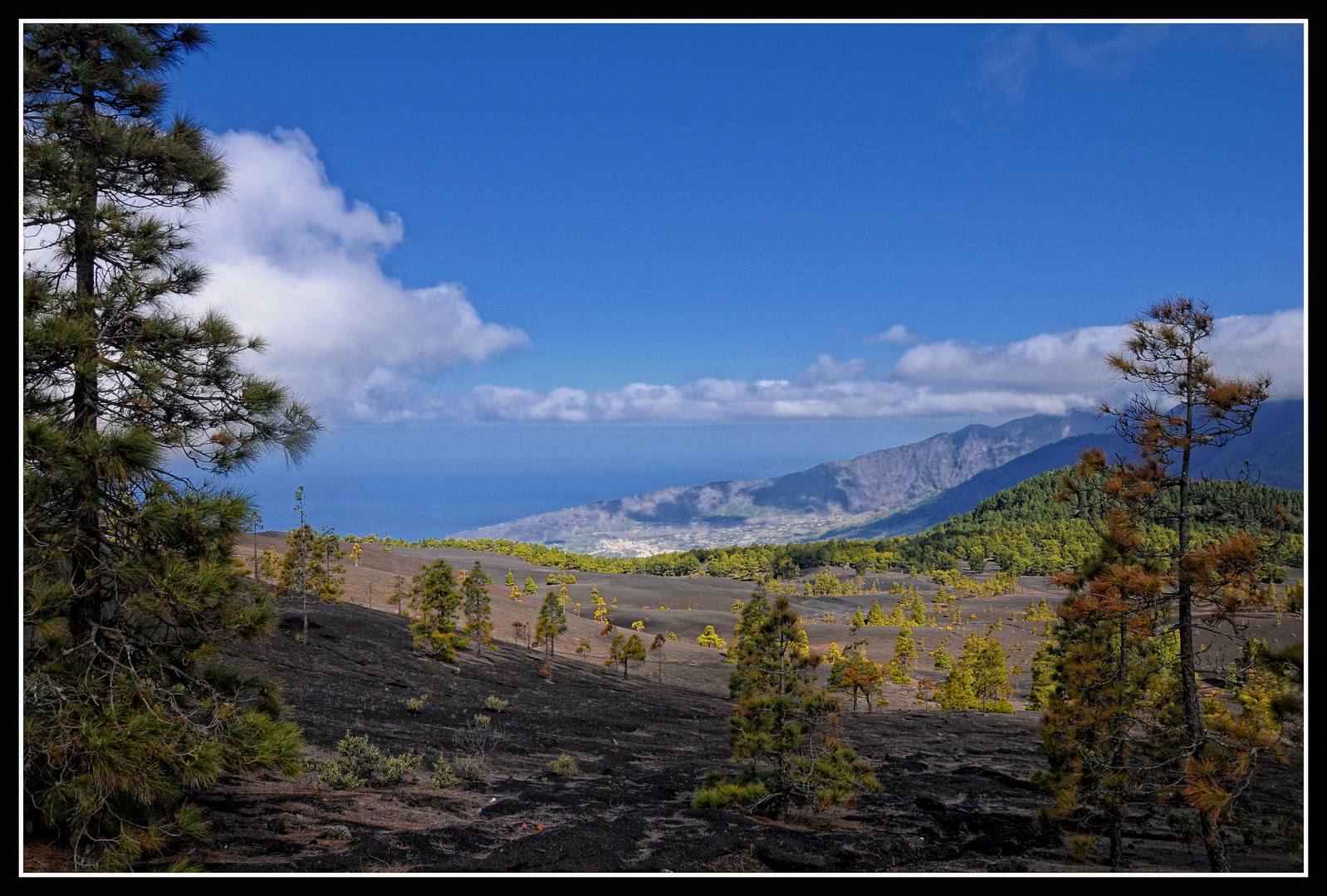 La Palma - Mirador