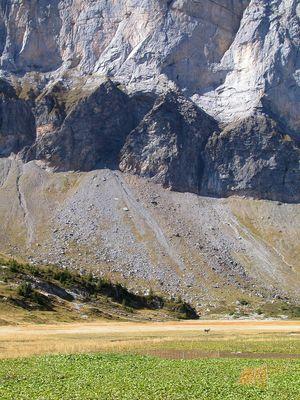 La Pampa cloisonnée