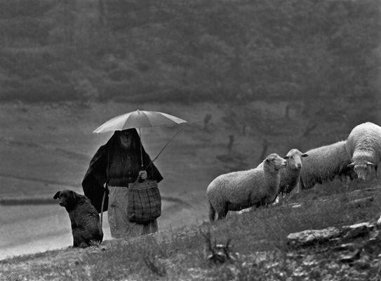 La pastora