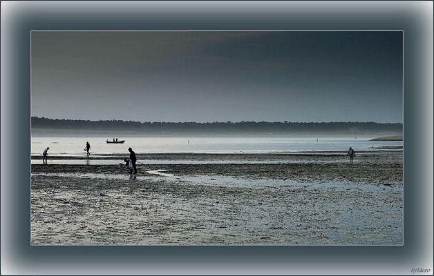 La pêche aux coques
