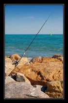 La pêche aux gros !!!